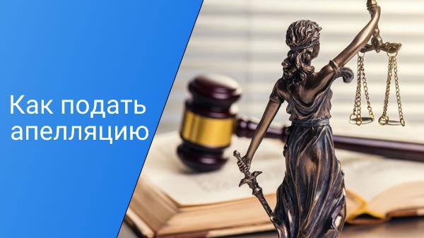 Read more about the article Как подать апелляцию